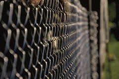 Chiuda su del recinto della rete metallica dell'acciaio Fotografia Stock