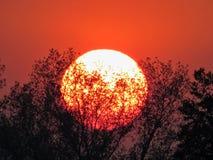 Chiuda su del tramonto rosso Fotografia Stock