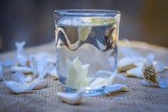 Chiuda su dell'acqua di aglio, allium sativum su una borsa dell'iuta Immagine Stock
