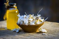 Chiuda su dell'allium sativum, aglio con il suo olio in una bottiglia trasparente Fotografie Stock