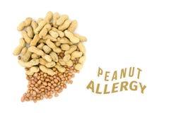 Chiuda su dell'arachide Fotografia Stock Libera da Diritti