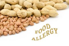 Chiuda su dell'arachide Immagini Stock Libere da Diritti
