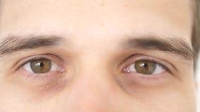 Chiuda su dell'gli occhi maschii Dettagli dell'apertura degli occhi marroni di un uomo che esamina la macchina fotografica Movime archivi video