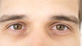 Chiuda su dell'gli occhi maschii Dettaglio degli occhi marroni di un uomo che esamina macchina fotografica immagini stock libere da diritti