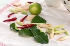 Chiuda su dell'ingrediente piccante per la tagliatella istantanea tailandese Fotografia Stock Libera da Diritti