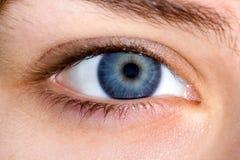 Chiuda in su dell'occhio femminile blu Immagine Stock