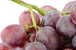 Chiuda su dell'uva rossa Fotografia Stock