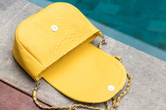 Chiuda su della borsa di lusso del pitone femminile alla moda dello snakseskin all'aperto Borsa femminile costosa di stile alla m Immagine Stock Libera da Diritti