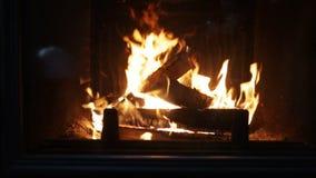 Chiuda su della combustione della legna da ardere in camino video d archivio