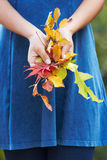 Chiuda su della donna che tiene Autumn Leaves Immagine Stock Libera da Diritti