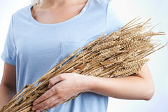 Chiuda su della donna che tiene il pacco di grano Immagine Stock