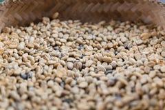 Chiuda su della merce nel carrello non arrostita dei chicchi di caffè Immagine Stock