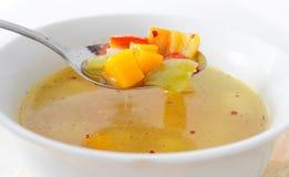 Chiuda in su della minestra di verdura Fotografia Stock