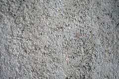 Chiuda su della parete del cemento, fondo immagine stock