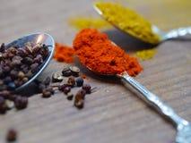 Chiuda su della polvere del curry, del pepe e della paprica Fotografie Stock Libere da Diritti