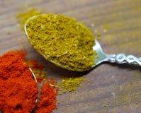 Chiuda su della polvere della paprica e del curry Immagini Stock