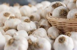 Chiuda in su della priorità bassa dell'aglio Immagini Stock