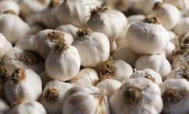 Chiuda in su della priorità bassa dell'aglio Immagine Stock Libera da Diritti