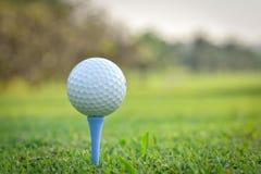 Chiuda in su della sfera di golf sul T Immagine Stock