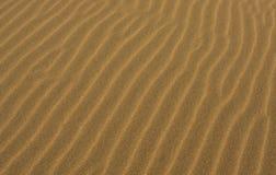 Chiuda su della spiaggia sabbiosa Immagini Stock