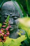 Chiuda su della statua del giardino di Buddha Immagini Stock