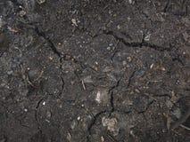 Chiuda su della terra incrinata, struttura del suolo asciutto Immagini Stock