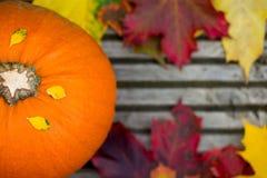 Chiuda su della zucca e di Autumn Leaves arancio su Backg di legno Immagini Stock