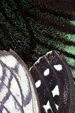 Chiuda su delle ali della farfalla Fotografia Stock Libera da Diritti