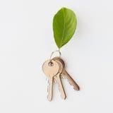 Chiuda su delle chiavi della casa e della foglia verde Immagini Stock Libere da Diritti