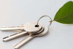 Chiuda su delle chiavi della casa e della foglia verde Fotografie Stock
