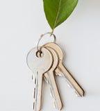 Chiuda su delle chiavi della casa e della foglia verde Fotografia Stock Libera da Diritti