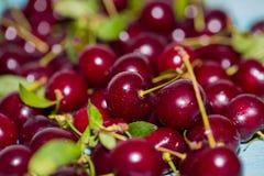 Chiuda su delle ciliege fresche rosse con le gocce di acqua Immagine Stock Libera da Diritti