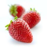 Chiuda su delle fragole dolci fresche su fondo bianco Fotografia Stock Libera da Diritti