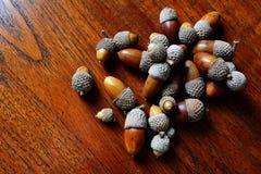 Chiuda su delle ghiande della quercia che si trovano sulla tavola del tek Fotografie Stock Libere da Diritti
