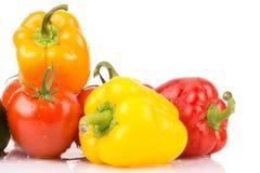 Chiuda su delle gocce di acqua sui vegatables dolci: paprica e pomodori arancio, gialli, rossi Immagini Stock