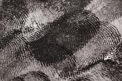 Chiuda in su delle impronte digitali Fotografia Stock Libera da Diritti