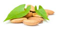 Chiuda su delle mandorle con le foglie verdi su un fondo bianco Fotografia Stock