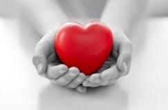 Chiuda su delle mani del bambino che tengono il cuore rosso fotografia stock libera da diritti