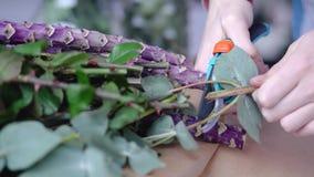 Chiuda su delle mani del fiorista che tagliano gli eccessivi rami per disposizione dei fiori video d archivio
