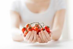 Chiuda su delle mani della donna che tengono i pomodori ciliegia Fotografia Stock Libera da Diritti