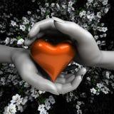 Chiuda su delle mani della donna che tengono il cuore Fotografia Stock