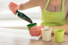 Chiuda su delle mani della donna con i semi della semina della cazzuola Fotografia Stock Libera da Diritti