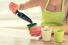 Chiuda su delle mani della donna con i semi della semina della cazzuola Fotografie Stock Libere da Diritti