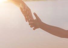 Chiuda su delle mani della madre o della sorella più anziana e di un bambino al tramonto con lo spazio della copia Fotografie Stock
