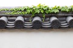 Chiuda su delle mattonelle cray del vecchio tetto Fotografia Stock