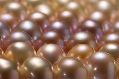 Chiuda in su delle perle Fotografie Stock