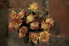 Chiuda su delle rose asciutte su fondo scuro immagini stock