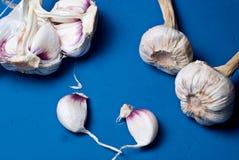 Chiuda su delle teste e dei chiodi di garofano dell'aglio fotografia stock