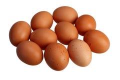 Chiuda su delle uova su fondo bianco con il percorso di ritaglio Immagini Stock Libere da Diritti