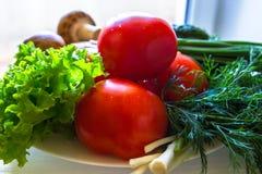 Chiuda su delle verdure succose, il cetriolo, i pomodori, i funghi freschi, cipolle Fotografia Stock